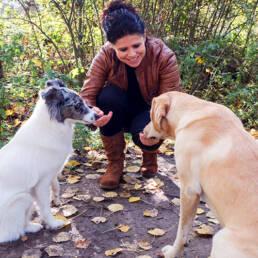 Manou honden beloning