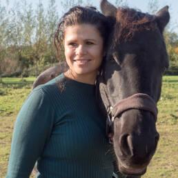 Manou paard